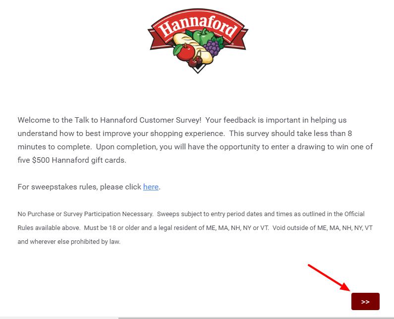 Online Hannaford Survey